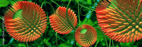 red flowers 3d
