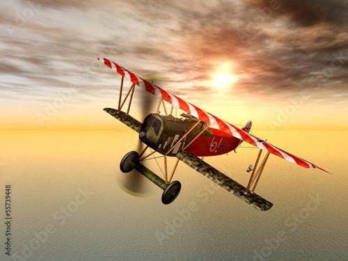 Fotografie, Tablou Deutsches Jagdflugzeug aus dem ersten Weltkrieg