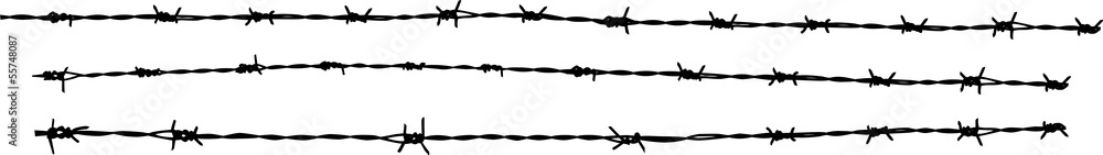 Fototapeta Barbed wire