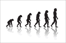 Evolution Of Human High Resolution