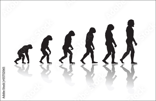 Evolution of human high resolution Fotobehang