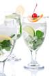 Citrus Mojito cocktails with light rum,