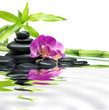purple orchids with bamboo tower black stones on water