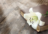 White lily on the book