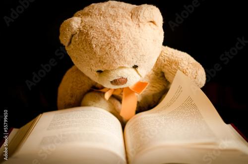 Photo  Teddy Bear Reading a Book