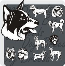 Dog Breeds - Vinyl-ready Vecto...