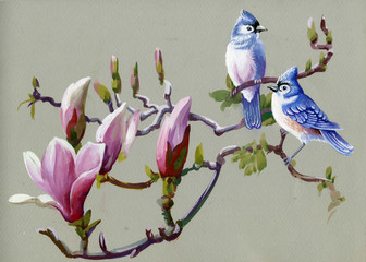 Fototapeta Vintage Painting collection Birds of spring
