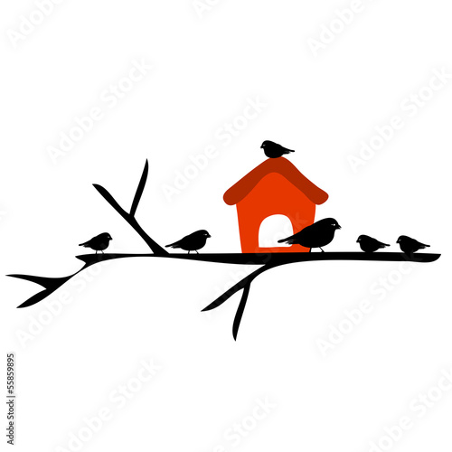 Fotografija Birds and birdhouses, silhouette birds on the branch