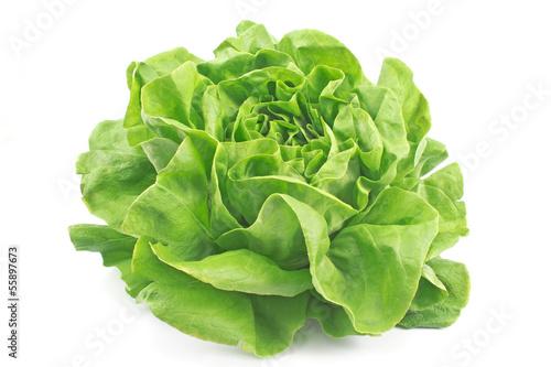 Fresh lettuce isolated on white Fototapete