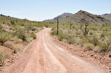 Gravel road, Organ Pipe Cactus National Park, Arizona