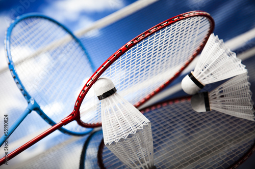 Shuttlecock on badminton racket Canvas Print