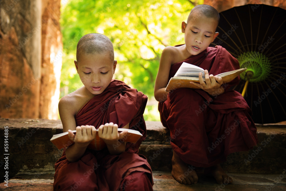 Fototapeta  Myanmar little monk reading book outside monastery
