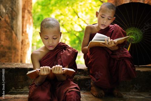 Poster Boeddha Myanmar little monk reading book outside monastery
