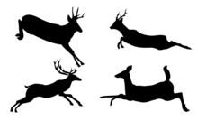 Jumping Deers Silhouette