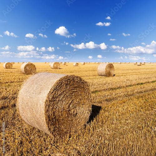 straw bales in august Fototapete
