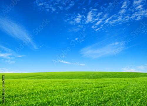 Foto op Plexiglas Platteland field