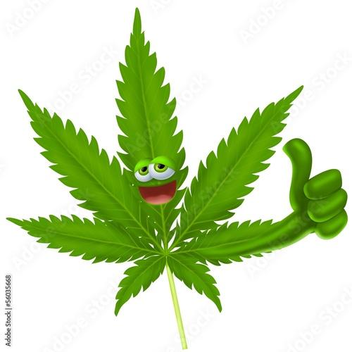 Fotografija  marijuana