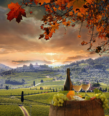 FototapetaWhite wine with barell in vineyard, Chianti, Tuscany, Italy