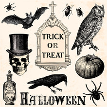 Trick Or Treat - Halloween Ele...