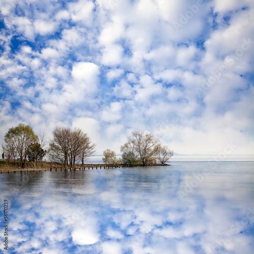 Foto op Aluminium Blauw Beautiful sky with tree