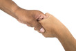handshake isolated on white background High resolution