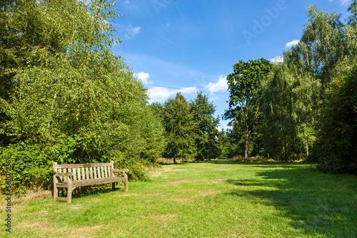 Fotobehang Tuin Park Bench in Beautiful Lush Green Garden