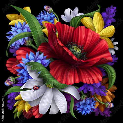 chaber-mak-stokrotka-ilustracja-kwiaty-wiejskie