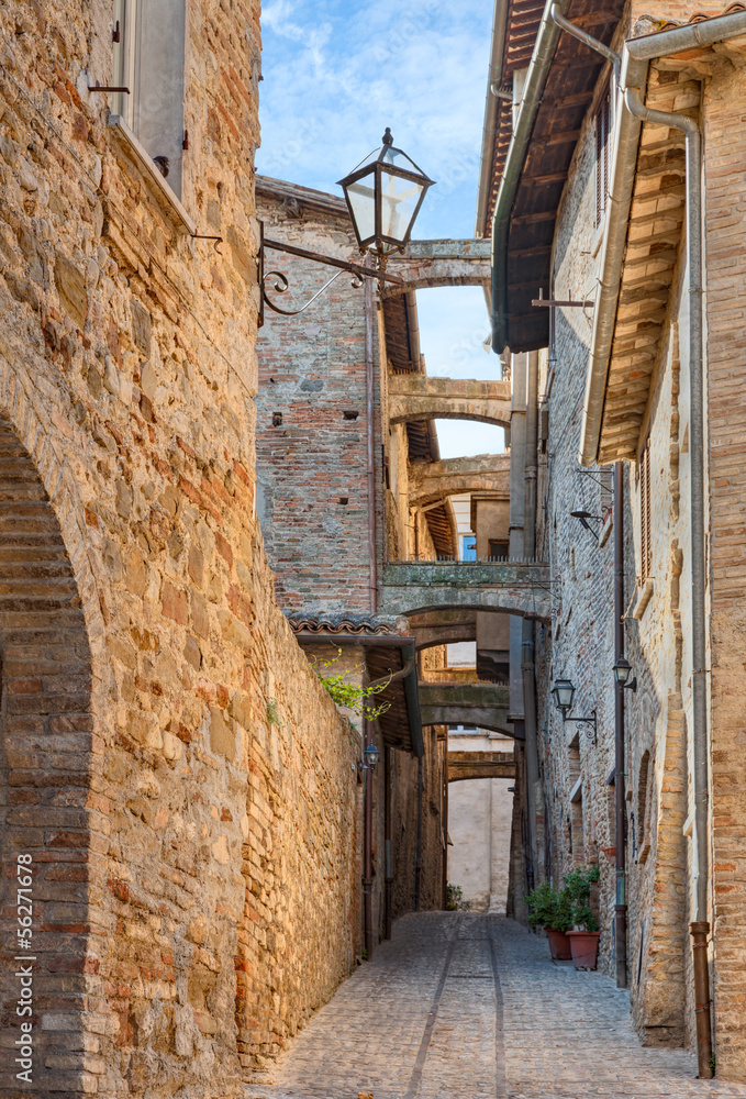 Fototapety, obrazy: Zabytkowa włoska aleja