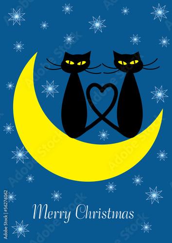 Tuinposter Hemel winter background with cartoon cats on the moon