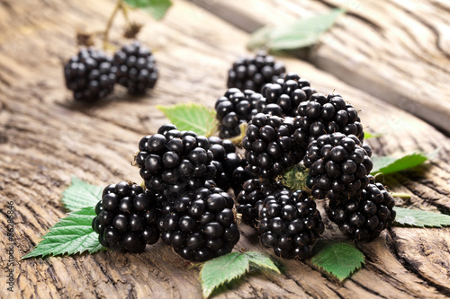 Blackberries Slika na platnu
