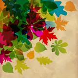 Herbst fallende Blätter Transparent Vintage
