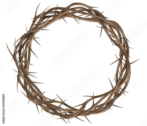 Stampa su Tela Crown Of Thorns Top