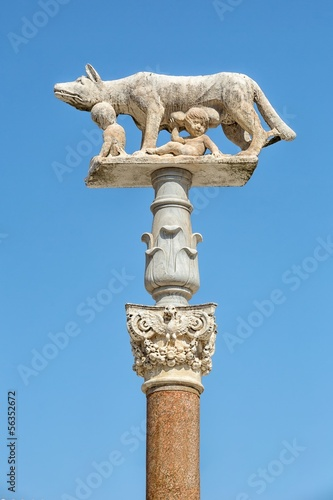 Statue of she-wolf and children in Siena in Italy Slika na platnu
