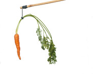 Dangle A Carrot On A Stick As ...