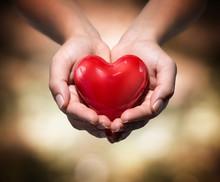 Heart In Heart Hands- Warm Bac...