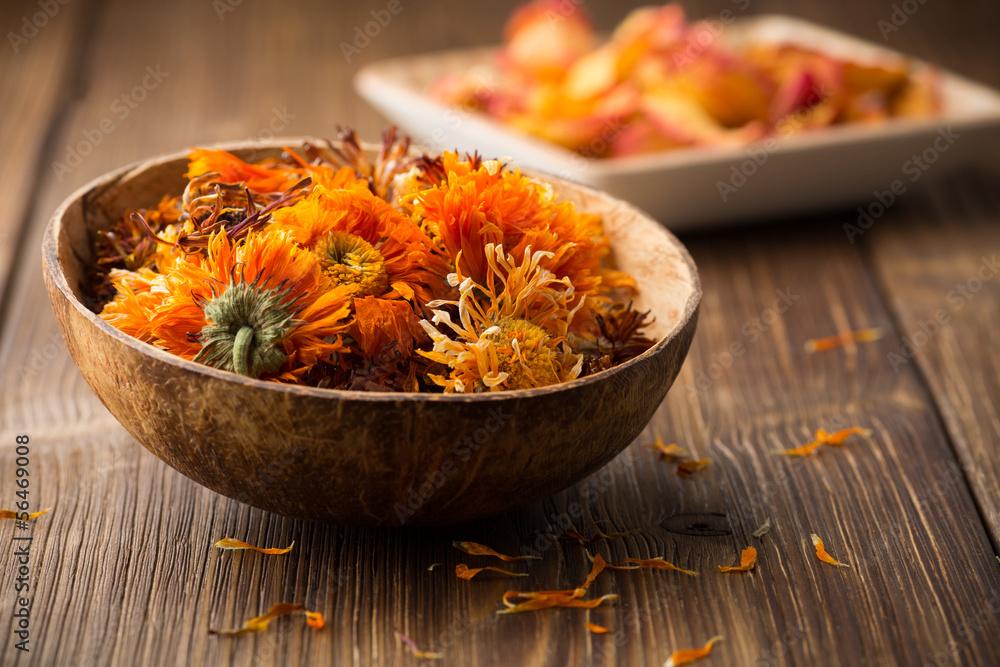 Fototapety, obrazy: Calendula homeopathic.