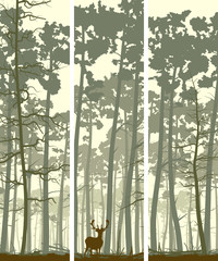 Obraz na Szkle Skandynawski Vertical banners of deer in coniferous wood.