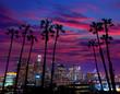 Downtown LA night Los Angeles sunset skyline California