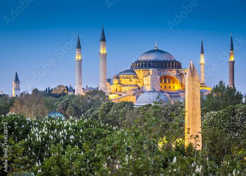 Sultanahmet Camii / Blue Mosque, Istanbul, Turkey Tablou Canvas