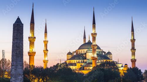 Sultanahmet Camii / Blue Mosque, Istanbul, Turkey Fototapet