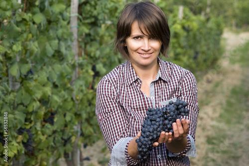 Fotografía  Closeup of woman in vineyard during harvest season
