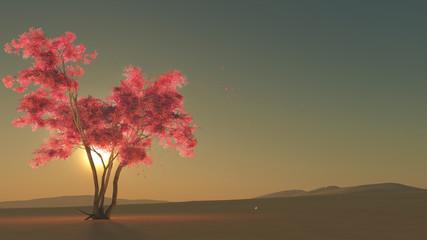 Fototapeta Natura Hoffnung