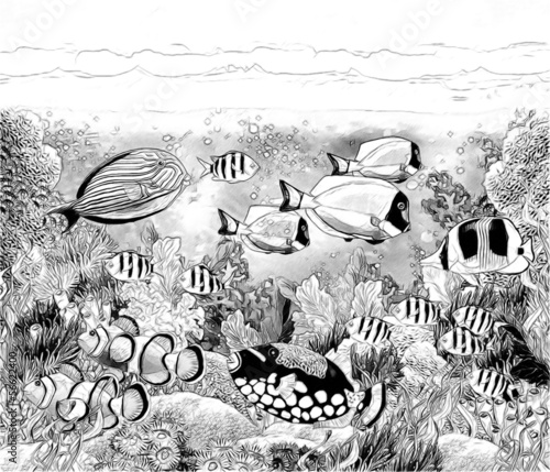 - The Coral Reef - Coloring Page - Illustration - Buy This Stock Illustration  And Explore Similar Illustrations At Adobe Stock Adobe Stock
