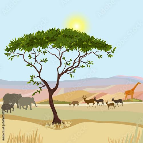 idealistyczny-krajobraz-afrykanskiej-gory