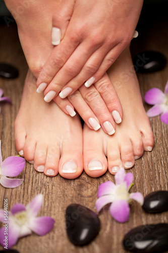 Aluminium Prints Manicure Relaxing pink manicure and pedicure with a orchid flower