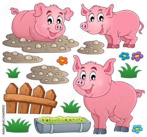 kolekcja-tematu-swini-1