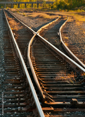 Fotografie, Obraz  Railroad Tracks