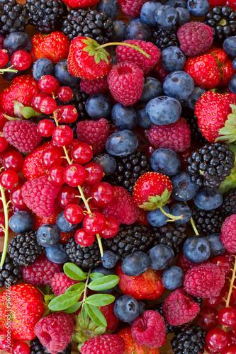Naklejka - mata magnetyczna na lodówkę bluberry, raspberry, blackberry and red currrunt