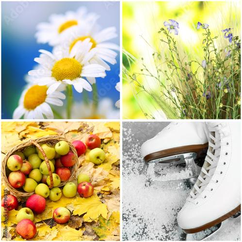 Fotografie, Tablou  Four seasons collage
