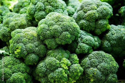 fresh broccoli Canvas Print